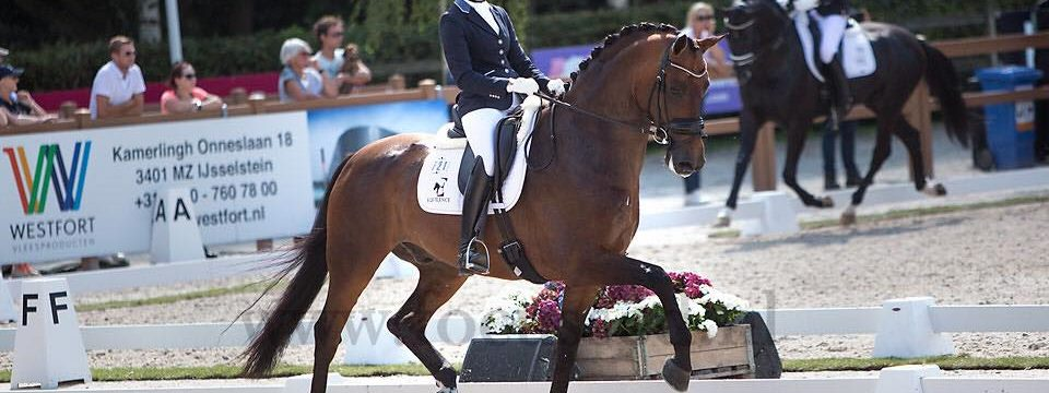 Longines FEI WBFSH World Breeding Dressage Championships for Young Horses