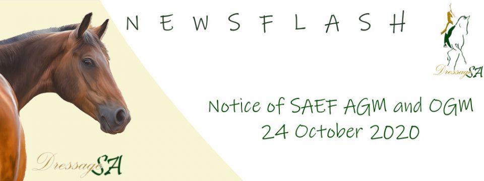 Notice SAEF AGM & OGM 24 October 2020